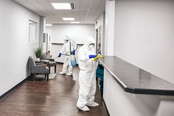 Professional housekeepers deep cleaning service working at office. Deep Cleaning services in Cambridge