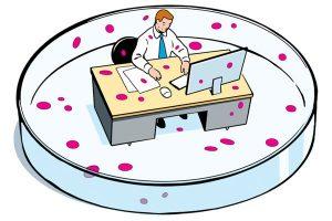 Office Petris Dish